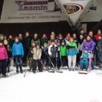 Eislaufen 2015