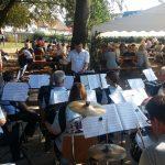 Rettichfest 2016 Harmonikafreunde Plochingen